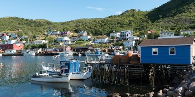 Boats at petty harbor-maddox cove, st. john's, avalon peninsula, newfoundland and labrador, canada