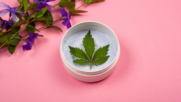 Body care cosmetics with marijuana. white round jar with a body scrub with a leaf of hemp and branches of field violet flowers on a pink background