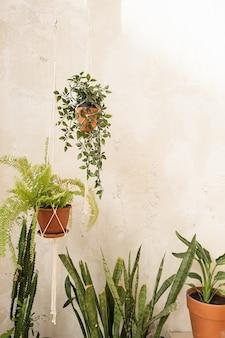 Современный домашний интерьер в стиле бохо.