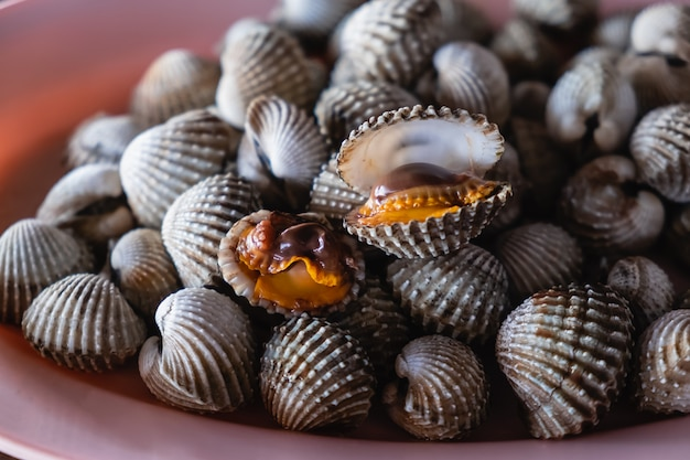 Boiled cockles with tasty sauce in the dish