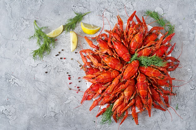 Boiled crayfish with dill.  copy space