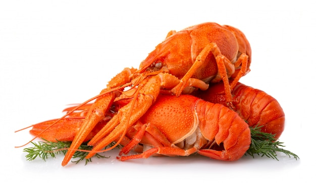 Boiled crayfish with dill isolated on white