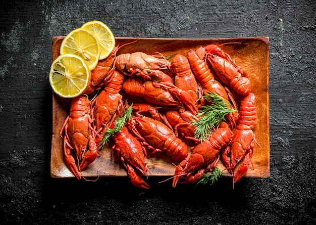 Boiled crayfish with lemon slices on black rustic table