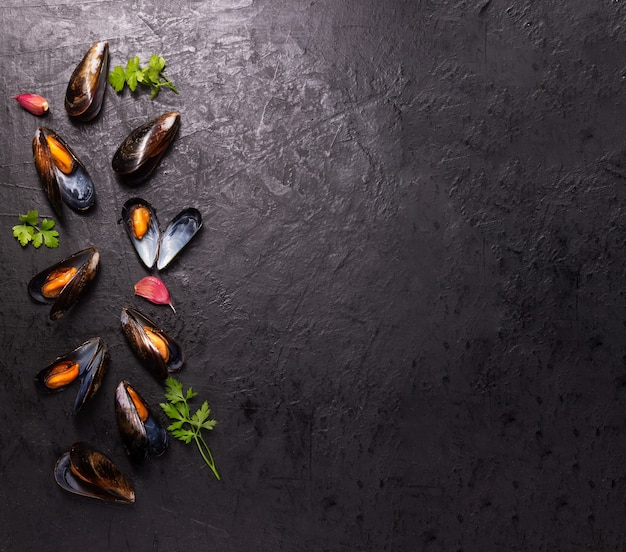 Boiled mussels with spices on dark space with copy space