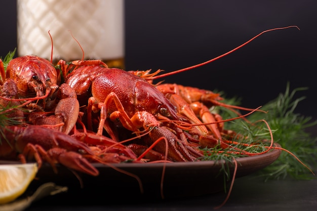 Boiled red crawfish, ready to eat with lemon slices and ice cubes on a dark background. fresh seafood snack.