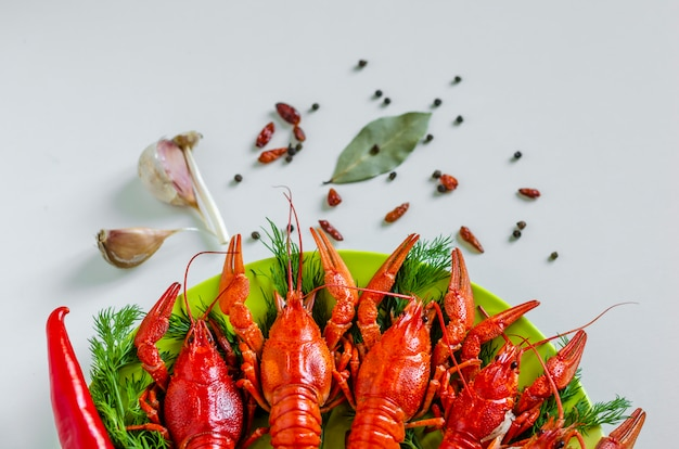 Boiled red crayfish or crawfish with dill herbs. close up. crayfish party, restaurant