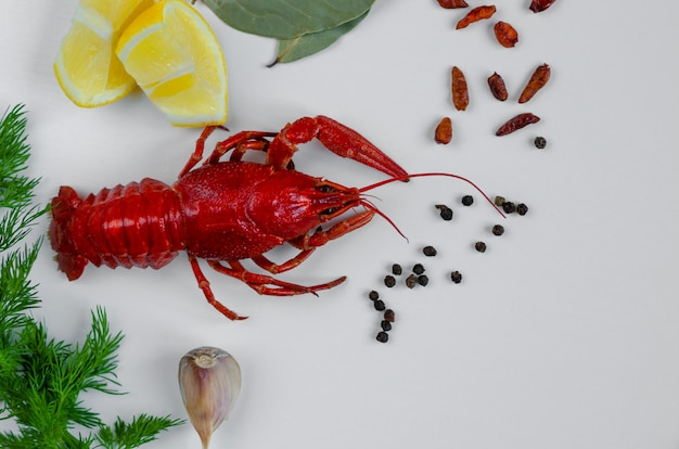 Boiled red crayfish or crawfish with red peper, lemon, dill, garlic and bay leaf