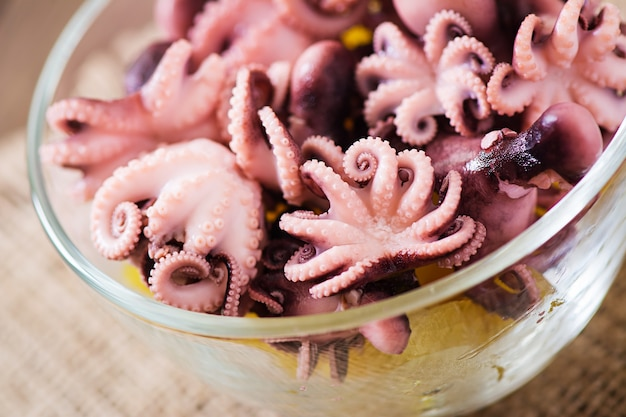 Boiled small octopus on a plate