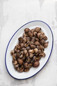 セラミックの背景に白い皿にハーブと茹でカタツムリ