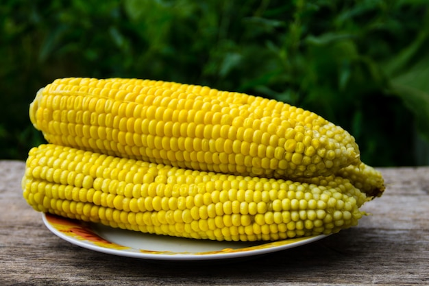 Boiled sweet corn on plate on rustic wooden table outdoor