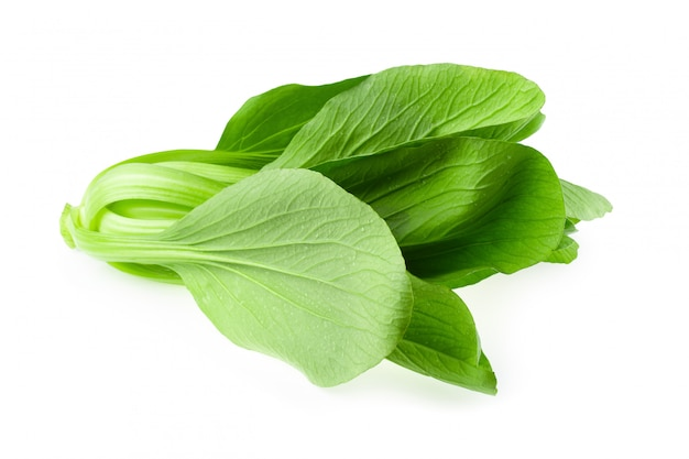 Bok choy cabbage isolated on white background