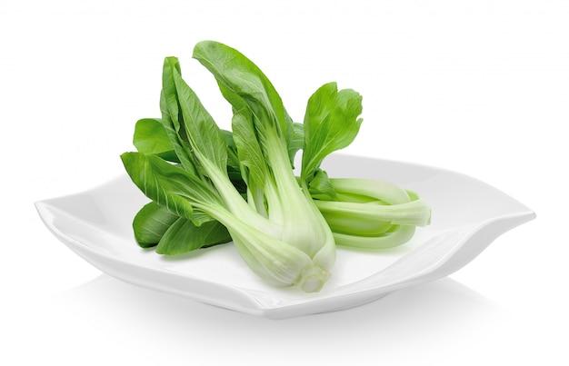 セラミックプレートの白菜(白菜)