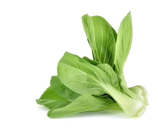 白い背景で隔離のチンゲン菜(白菜)