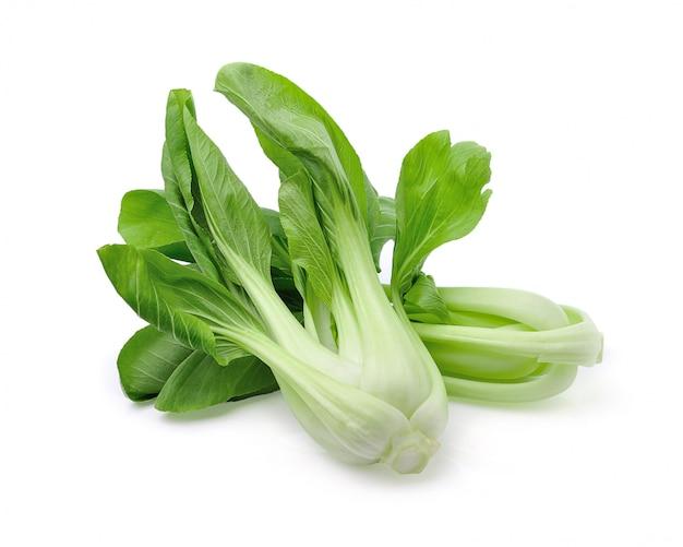 分離された白菜(白菜)