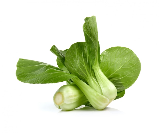 Bok choy (chinese cabbage or qing geng cai) isolated on white space
