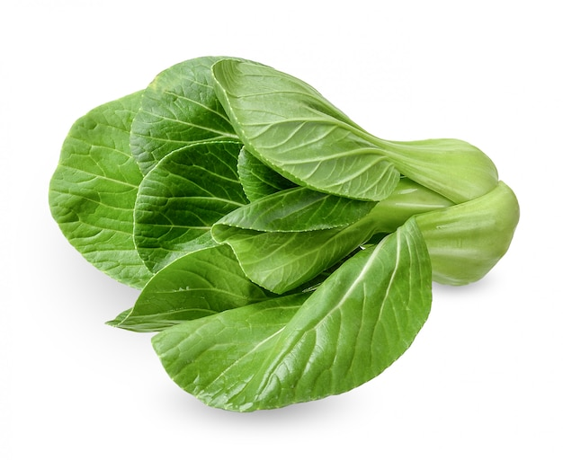 Bok choy isolated on white clipping path