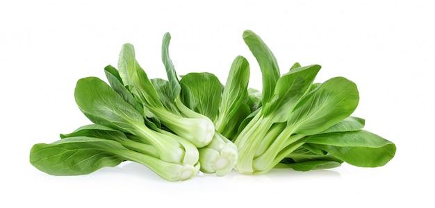 白で隔離される青梗菜