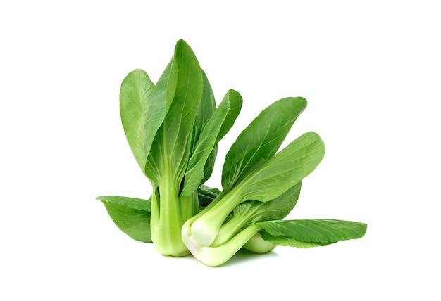 흰색 배경에 고립 된 복 쵸이 야채