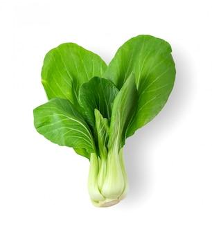 分離された白菜野菜の葉