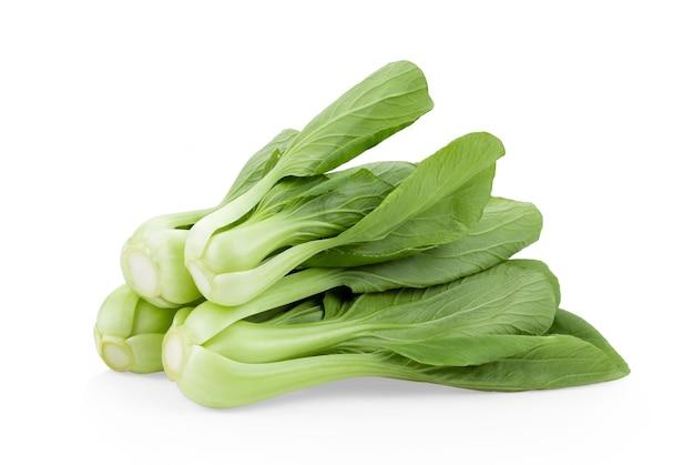 白い背景のチンゲン菜野菜