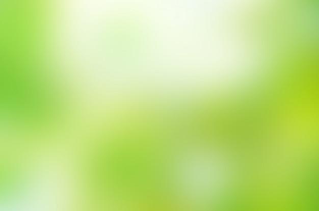 Bokeh green nature. beautiful green bokeh