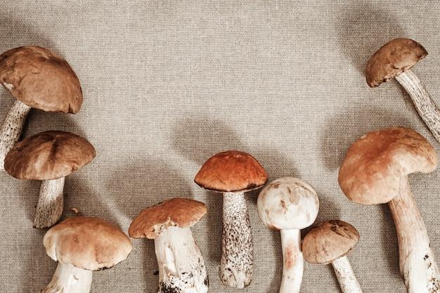 Boletus edulis and birch bolete mushrooms on textile surface
