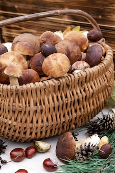 Boletus mushrooms in basket. close up. autumn background.