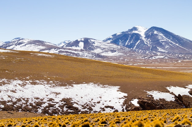 Bolivian landscape, salvador dali desert view. beautiful bolivia Premium Photo