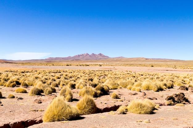 Боливийский пейзаж гор