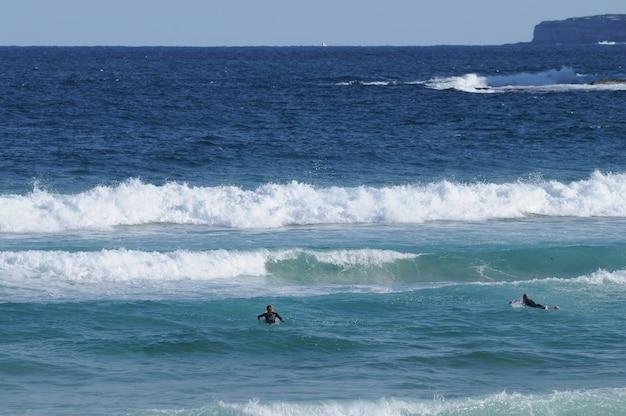 Bondi beach and surfers in sydney australia