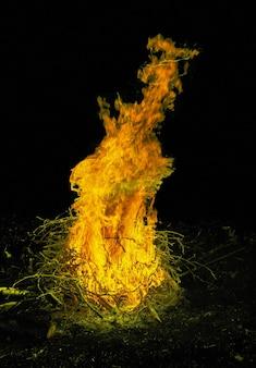 芝生に囲まれた屋外の夜の焚き火