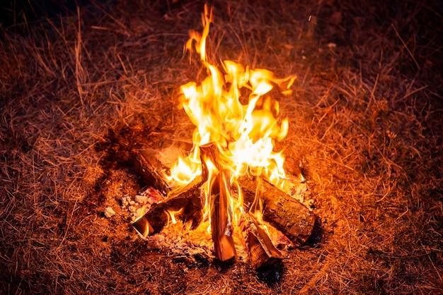 夕方の自然の焚き火。地面の炎で薪を燃やす。