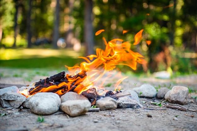 森の中の自然の焚き火炎の炎山の屋外の観光キャンプでのキャンプファイヤー