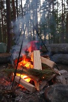 Костер вечером в лесу с дровами и палатками крупным планом