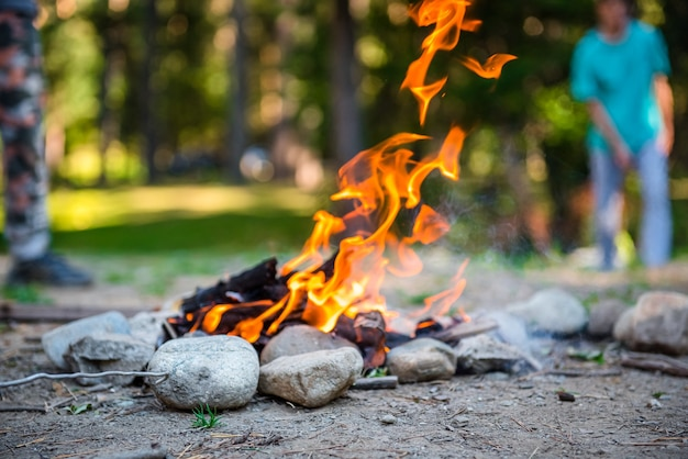 Bonfire in nature in the forest flame of fire campfire in a tourist camp outdoors in the mountain