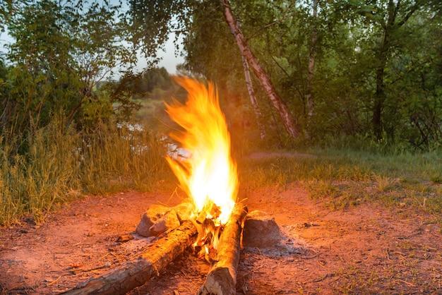 밤에 숲에서 물 근처 모닥불