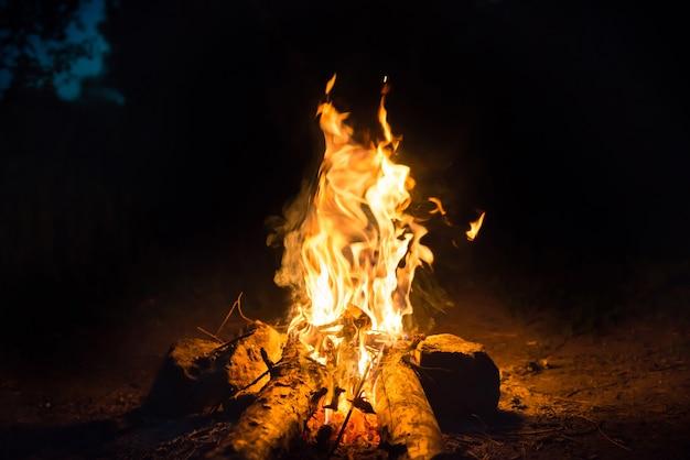 夜の森の水の近くで焚き火