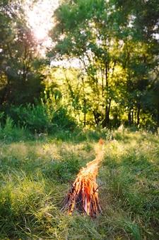 夏の夜の焚き火