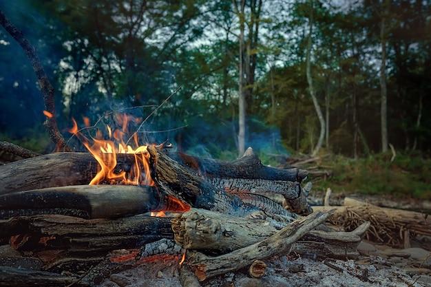 Костер на природе в лагере