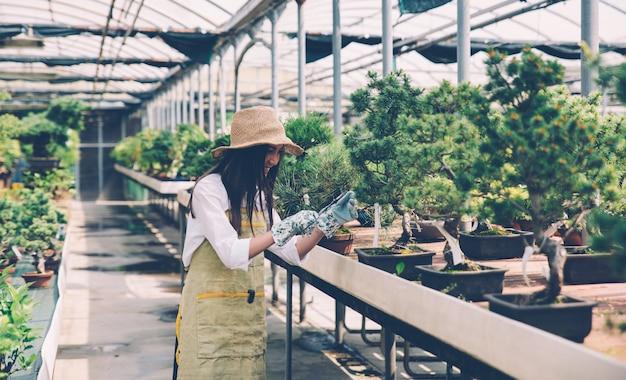 Бонсай-тепличный центр. ряды с небольшими деревьями, женщина работает и ухаживает за растениями