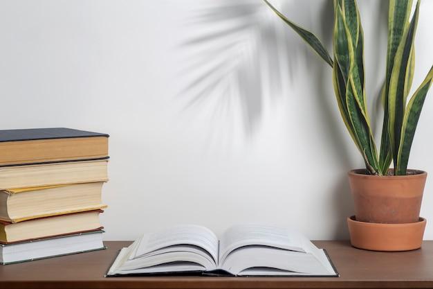대학 또는 가정 책상 및 학교 도서관의 탁자에 있는 책 배경 책