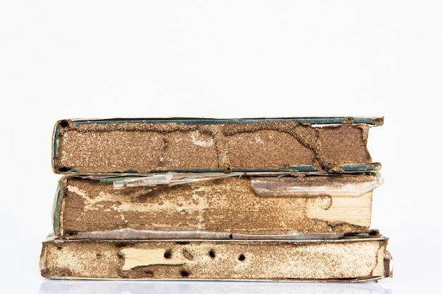 Book eaten by termite.