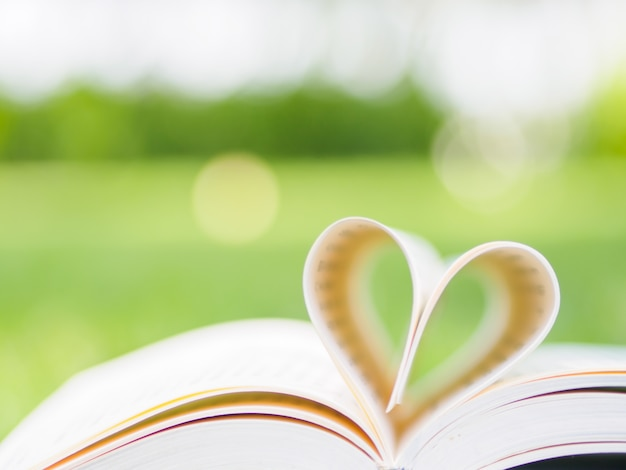 Book in garden with top one opened and pages forming heart shape