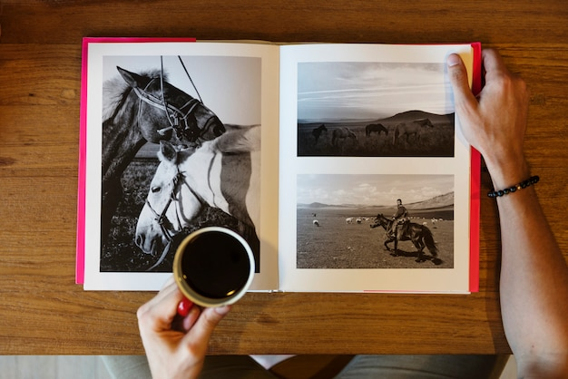 A book of horse photography