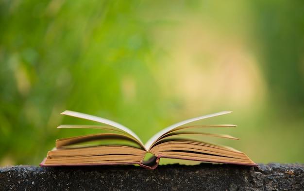 Book in nature