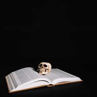 Book of spells and skull