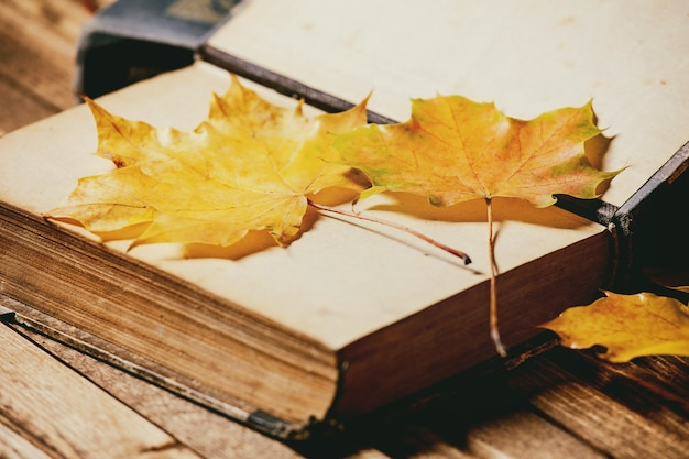 Books and autumn leaves