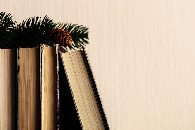 Books and christmas tree with cones on the old wooden shelf.