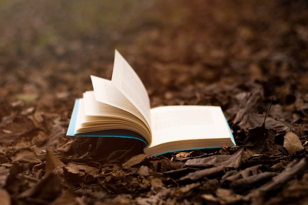 Books and imagination still life