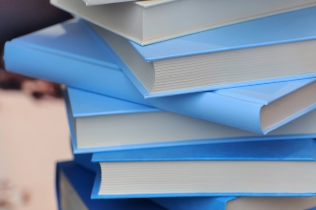 青い表紙の本